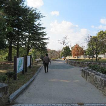 近くには、ついつい散歩したくなる公園もあります。過ごしやすそう。