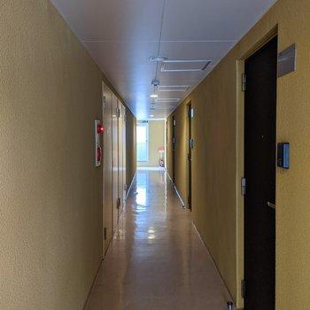共用部分の壁は黄色でポップな雰囲気。