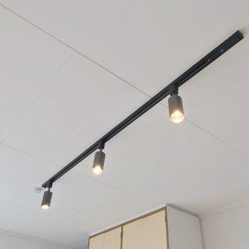 天井にはライティングレールがありました。