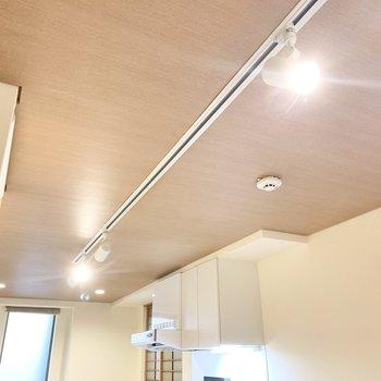 天井にはライティングレール。