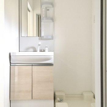 洗面台と洗濯機置場が並びます。(※写真は別棟1階同間取り別部屋のものです)