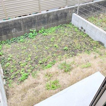 専用庭兼バルコニー。家庭菜園だって出来そう!眺望は塀です。