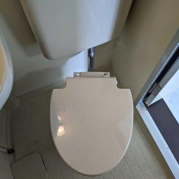 入口側にシンプルなトイレがあります。