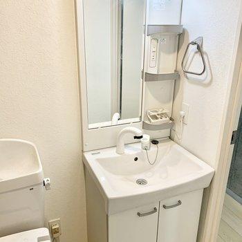 すぐ横の独立洗面台でしっかり手を洗えるのはうれしいポイント。※クリーニング前の写真です