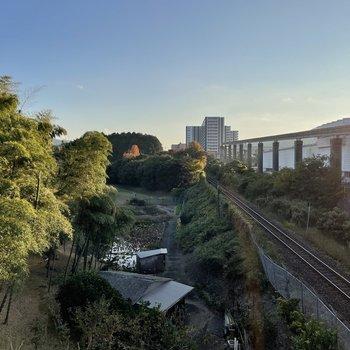 すぐ隣にある志井公園。緑も豊かでモノレールのある風景はひと目でお気に入りになること間違いなしです