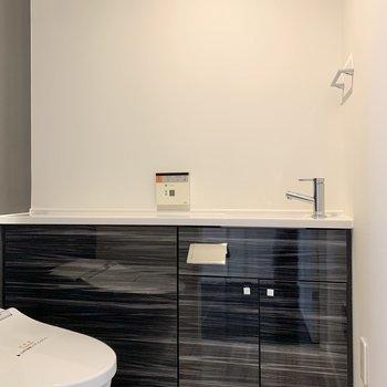トイレ内にお手洗いが付いていますよ。※写真は前回募集時のものです