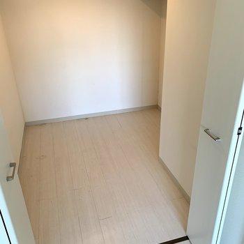 出ました。ここがあの広いクローゼットになります。一瞬、3LDKのお部屋かと思いました。(*写真はクリニーニング前のものです)