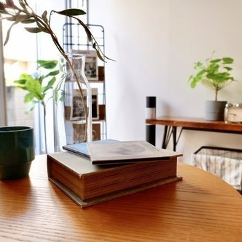 窓際に植物※写真は別部屋、家具はイメージです