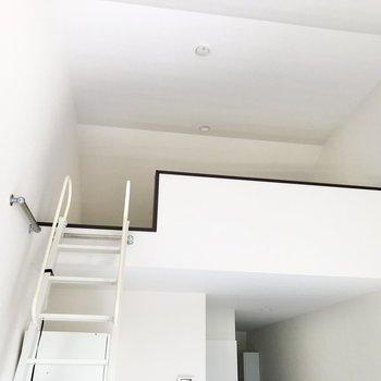 見上げると天井が高く、解放感が。