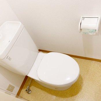 トイレは玄関右。トイレマットが必要かな。