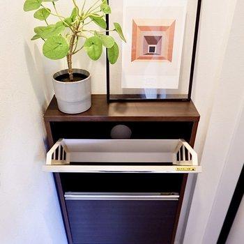 6足ほど収納できそう。棚の上には鍵や植物などを置いておけますね。
