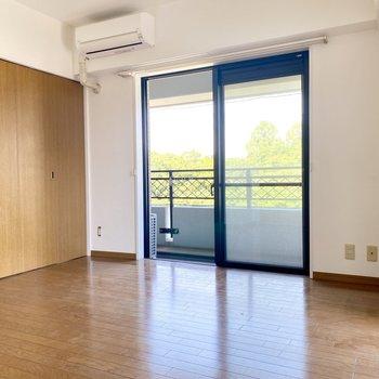 間の扉を閉めてもゆとりがあります。ダイニング側にはソファーやテーブルを置きたい。