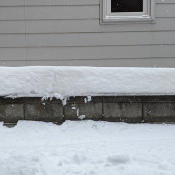 1階なので冬場は雪が目の前まで積もります。開けられなくなることがあります。