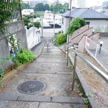 お部屋までは階段で向かいます。