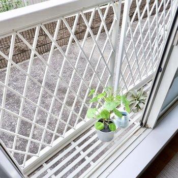 窓の外側には、洗濯物の落下防止にも役立つフラワーボックスがあります。