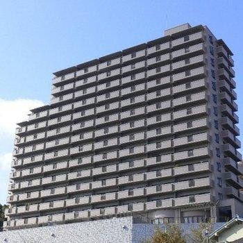 コスモ三滝本町