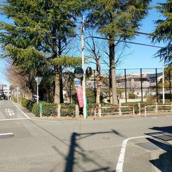 周辺は穏やかな住宅街。公園もありましたよ。ワンちゃんのお散歩もしやすそう!