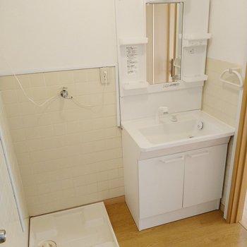 独立洗面台も綺麗!洗濯機置き場もこちらに。隣の扉は・・・