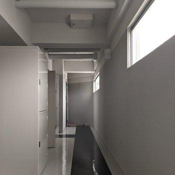 廊下は窓があるので明るめです。