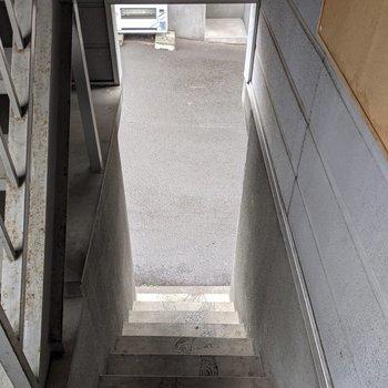 1階分階段を上がった場所にあります。