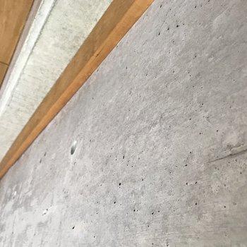 コンクリートの質感がたまらない…木との相性もいいですね。
