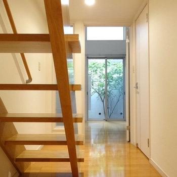 玄関入るとすぐにロフトに続く階段。そして奥に見えるグリーン・・・。