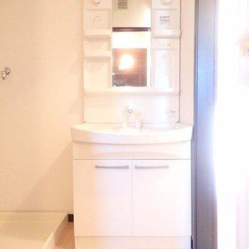 独立洗面台の横に洗濯機