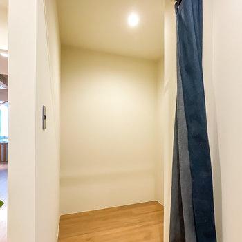 中には照明付きのフリースペースが!とても広いので、どんな用途の収納にもお使いいただけます。