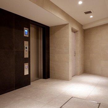 エレベーターホールはゆったりしていて、大きな荷物も搬入しやすそうです。