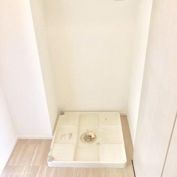 洗濯パンは脱衣スペースにあります!(※写真は4階の同間取り別部屋のものです)