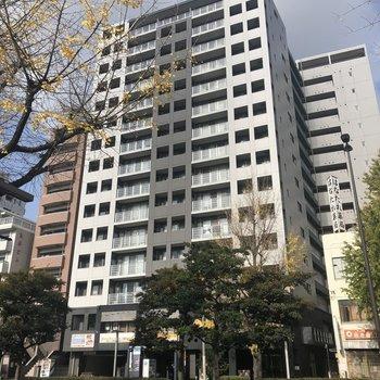 住吉通り沿いにある大きなマンション。