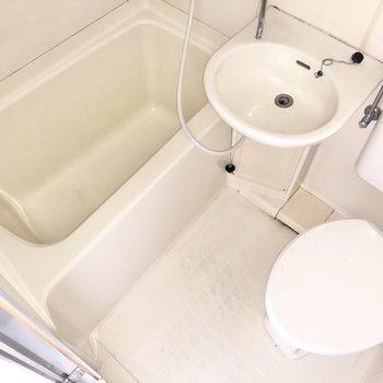 まるっとシャワーで洗い流せるから、掃除も進んでできそうです。