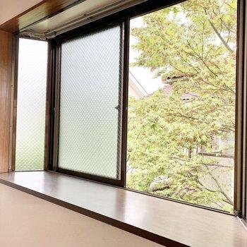 出窓には観葉植物を置いてみては?