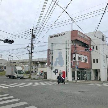 通り沿いには動物病院もあります。