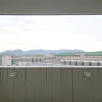 目の前はビール工場。空が広く見えて気持ちいいです。