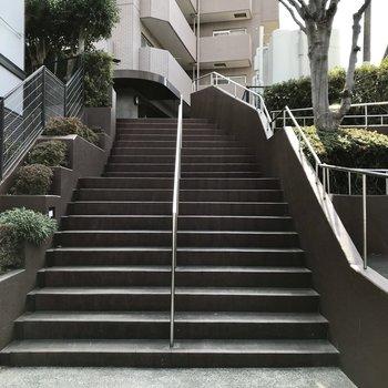 この階段をのぼってくださいね