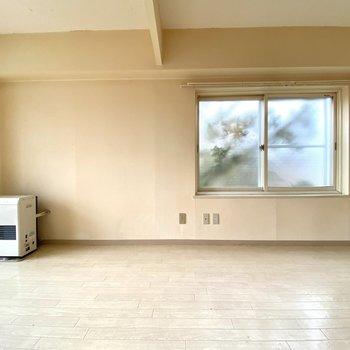 こちら側にテレビを置けそうです。