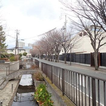 【周辺環境】水路もありました。街路樹の葉っぱが出てきたら気持ちいいだろうなあ。