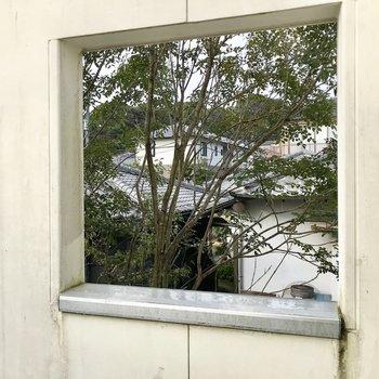 眺望はないけれど、この小窓からお隣の緑がちらりとのぞいていました(※写真は同間取り別部屋、清掃前のものです)