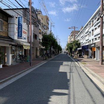 マンション前の道路。歩道が広いだけで、暮らしやすさ、街の景色は変わるものだなと実感。