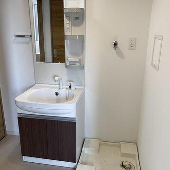 洗面所はシャンプドレッサー付きです