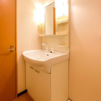 手前にはシャンプードレッサー仕様の棚付き洗面台があります。