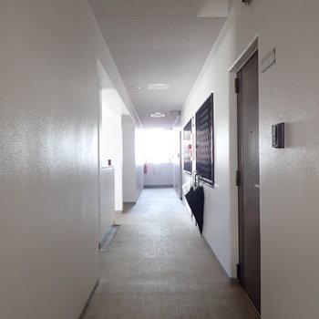【共用部】廊下は綺麗に清掃されていました!歩くのが気持ちよかったです。