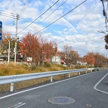 ここから穏やかな樋井川沿いを歩いた先にお部屋があります。