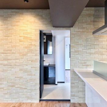 キッチンの前の扉の中はサニタリー。