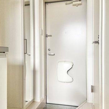 玄関はこちら。コンパクトなサイズですが、シューズボックスがあるのでスッキリ保てそう。※写真は通電前のものです