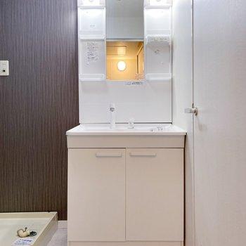 独立洗面台はポケット多め。日用品の収納もたくさんできますよ。