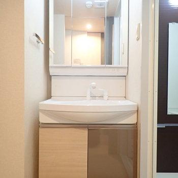 洗面台は鏡の裏も収納です。
