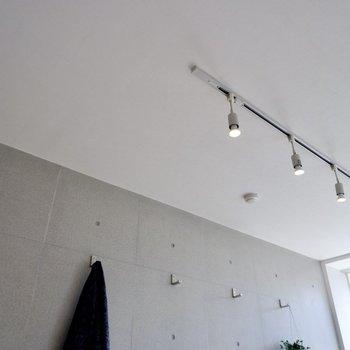 天井にはスポットライトが連なり、
