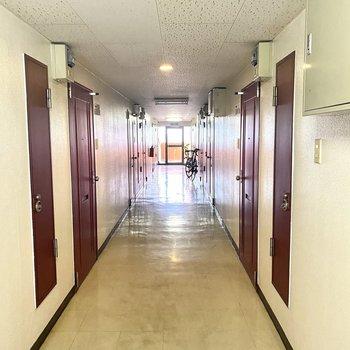 廊下部分です。光が入ってきて明るいです。